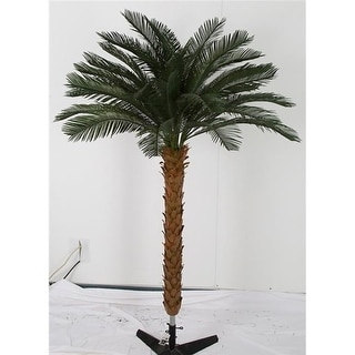 Autograph Foliages A-174720 8.5 ft. Cycas Palm Tree by 4 Green