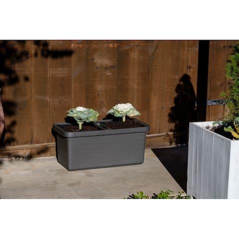 Urbalive Berberis Duo Self Watering Rectangle Planter with wheels