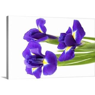 """""""Blue iris"""" Canvas Wall Art"""