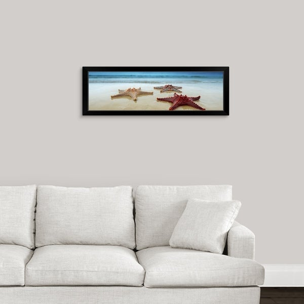 """Starfish in Queensland, Australia"" Black Framed Print"