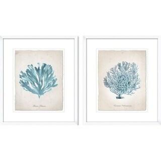 PTM Images 1-18968 Teal Sea Coral Prints (Set of 2) - N/A