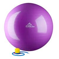 Black Mountain Products 75cm Anti-Burst Stability Ball with Pump - Purple