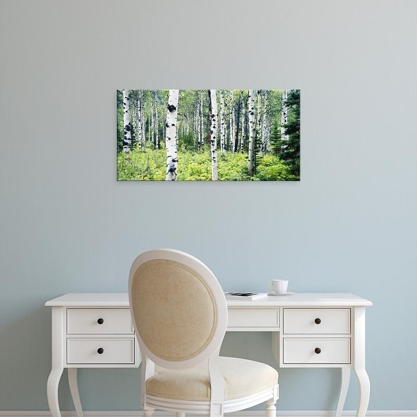 Easy Art Prints Paul Souders's 'Alpine Forest Of White Birch Trees' Premium Canvas Art