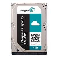 Seagate HDD ST1000NX0323 1TB SAS 12Gb/s Enterprise Storage 7200RPM 128M Cache Bare