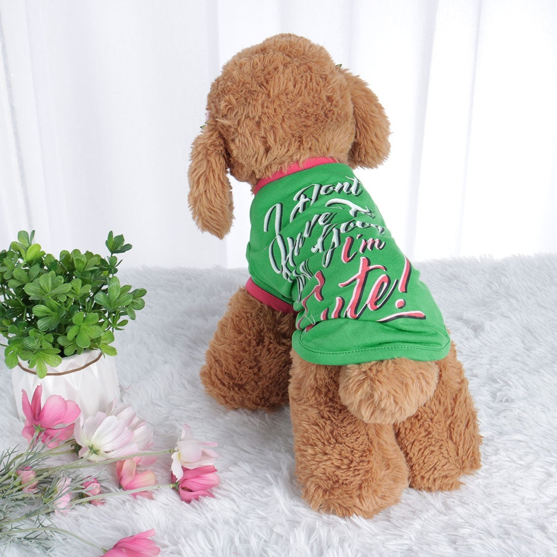 Dog T Shirt Puppy Small Pet Sweatshirt Vest Tops Clothes Apparel Vest Costume (S)