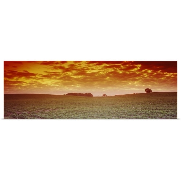 """""""Clouds over a soybean field, Albert Lea Township, Freeborn County, Minnesota"""" Poster Print"""