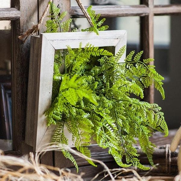 RusticReach Green Plant Oba Fern in Wood Frame Plant Wall Art