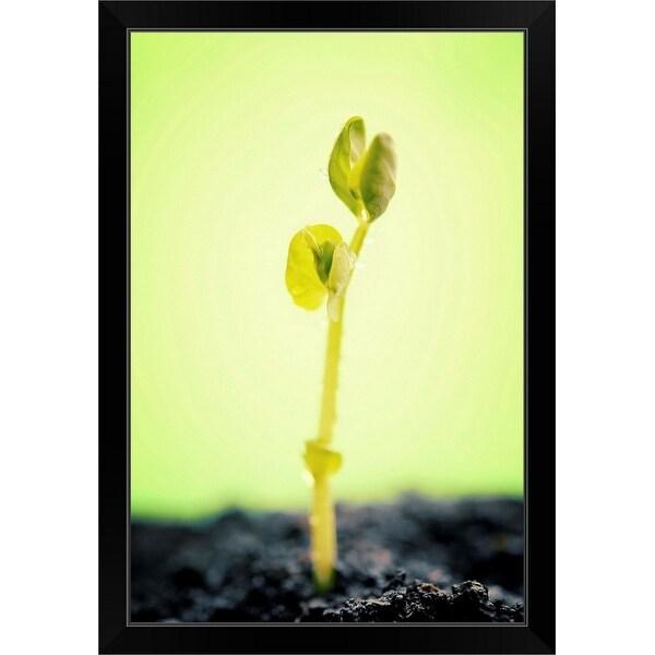 """""""New life"""" Black Framed Print"""