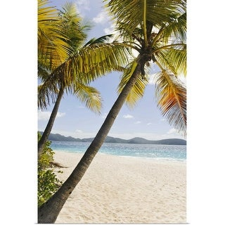 """Palms over sandy beach"" Poster Print"