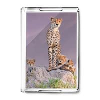 Cheetah & Babies - Lantern Press Photography (Acrylic Serving Tray)