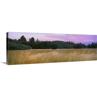 """""""A sunset hovers over a meadow at Quail Hollow Ranch County Park, Felton, California"""" Canvas Wall Art"""