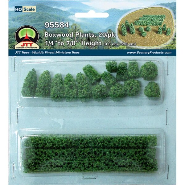 "Boxwood Plants .875"" 20/Pkg-"