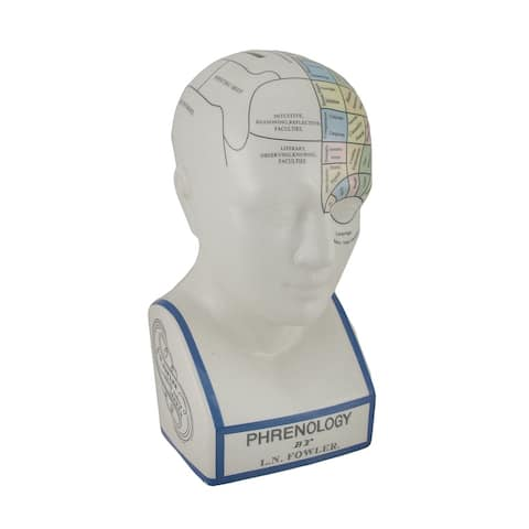 Large Phrenology Head with Color Trait Map Ceramic Coin Bank - 12 X 5.5 X 5.5 inches