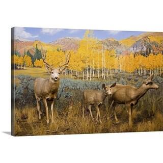 """""""Mule Deer at the Utah Natural History Museum, University of Utah, Salt Lake City, Utah"""" Canvas Wall Art"""