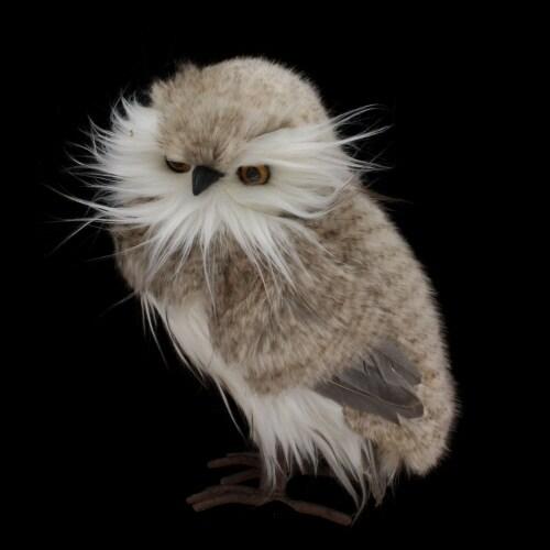 Grey Feather Owl