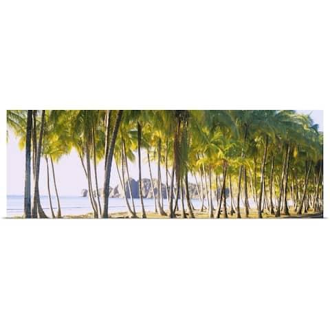 """Palm trees on the beach, Carrillo Beach, Nicoya Peninsula, Guanacaste Provinc"" Poster Print"