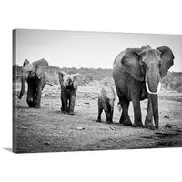 Premium Thick-Wrap Canvas entitled Female African elephant and three calves, Kenya. - Multi-color