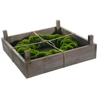 "14"" Green Moss Artificial Spring Wreath in Rustic Wood Frame Box"