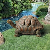 Design Toscano The Cagey Tortoise Statue: Medium