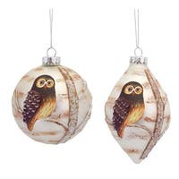 Pack of 6 Woodland Owl Embellished Painted Glass Ball and Drop Christmas Ornaments - WHITE