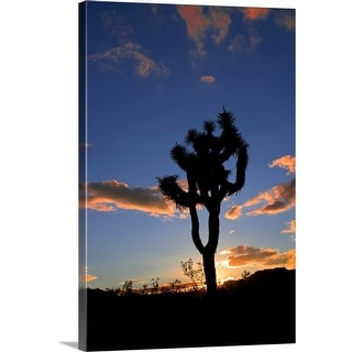 """Joshua Tree Sunset"" Canvas Wall Art"