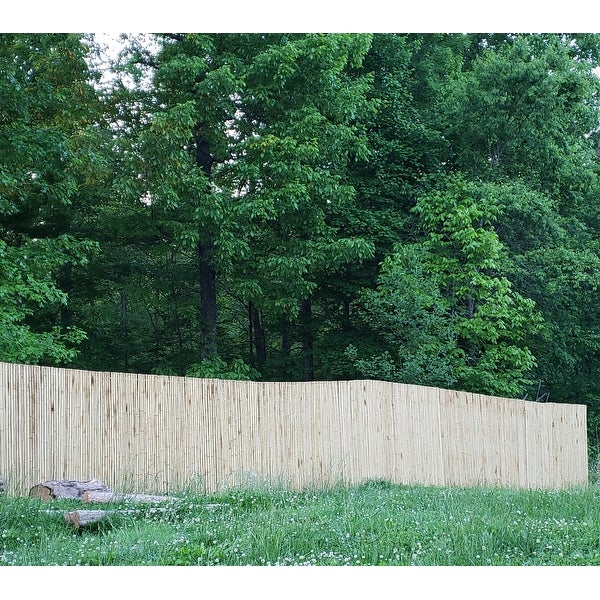 Top Product Reviews For Natural Bamboo Fencing Best Privacy And