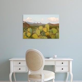 Easy Art Prints Larry Ditto's 'Chisos Mountains' Premium Canvas Art