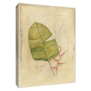 """PTM Images 9-154137  PTM Canvas Collection 10"""" x 8"""" - """"Botanical Journal I"""" Giclee Leaves Art Print on Canvas"""