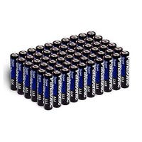 Panasonic AA Batteries Heavy Duty (48 Pack)