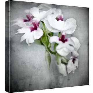 "PTM Images 9-99596  PTM Canvas Collection 12"" x 12"" - ""Orchids"" Giclee Orchids Art Print on Canvas"