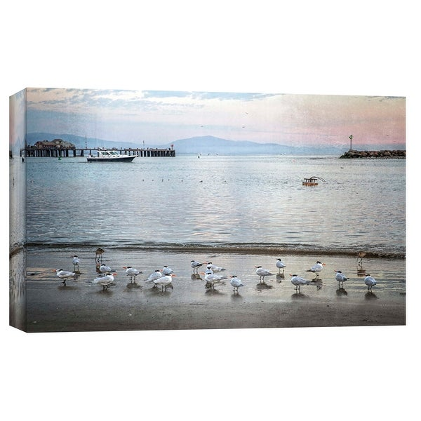 """PTM Images 9-102262 PTM Canvas Collection 8"""" x 10"""" - """"Harbor Birds"""" Giclee Birds Art Print on Canvas"""