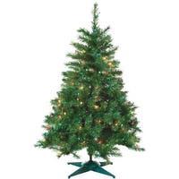 Gerson/Yantian 2'P/L Colrad Spruce Tree 1484-20M Unit: EACH