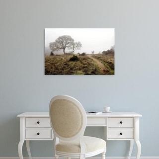 Easy Art Prints Alan Blaustein's 'Oak Tree #25' Premium Canvas Art