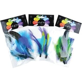 "Feather Picks 6"" To 7"" 2/Pkg-Assorted Blue, Green & Purple Guinea - Blue"