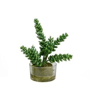 "7.25"" Decorative Artificial Silk Succulent Arrangement in Clear Round Glass Vase - Green"