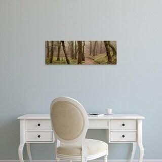 Easy Art Prints Alan Blaustein's 'Oak Tree #23' Premium Canvas Art