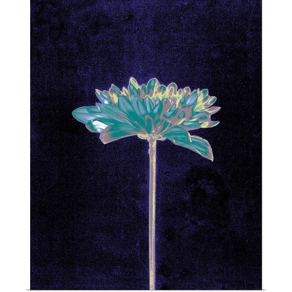 """""""Multicolored Single Flower"""" Poster Print"""