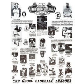 The Negro Baseball Leagues Poster (18x24)