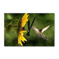 Hummingbird - Lantern Press Photography (Acrylic Wall Clock) - acrylic wall clock