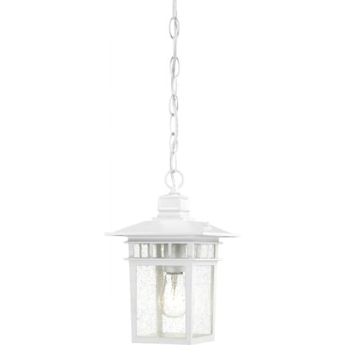 Nuvo Lighting 60/4954 Cove Neck Single-Light Hanging Lantern with Clear Seed Glass Panels