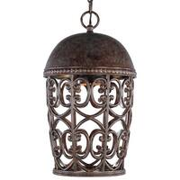 Designers Fountain 97594 1-Light Down Lighting Outdoor Pendant from the Dark Sky Amherst Collection - Burnt Umber - n/a