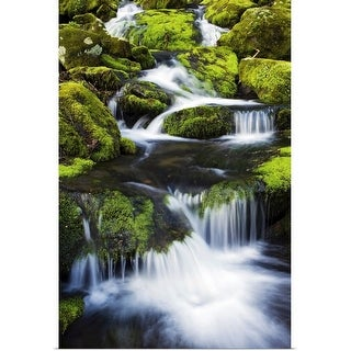 """""""Great Smoky Mountains National Park, Tennessee"""" Poster Print"""