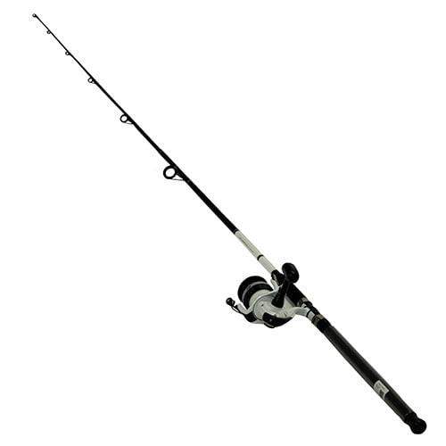 Daiwa DWB50-B//F902M D-Wave Saltwater Spinning Rod//Reel Fishing Combo