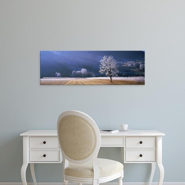 Easy Art Prints Panoramic Images's 'Trees With Frost, Franstanz, Tyrol, Austria' Premium Canvas Art