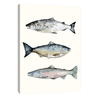 """PTM Images 9-108718  PTM Canvas Collection 10"""" x 8"""" - """"Fish Grouping 3"""" Giclee Fishes Art Print on Canvas"""