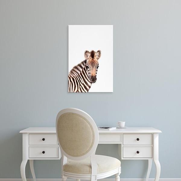 Easy Art Prints Tai Prints's 'Baby Zebra' Premium Canvas Art