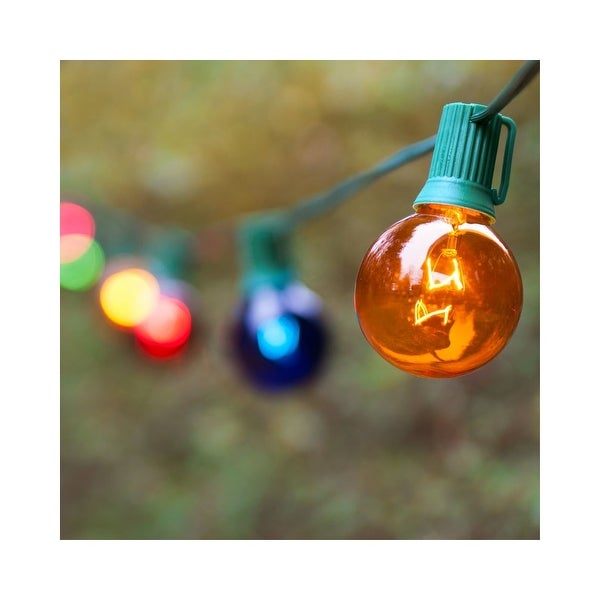 Wintergreen Lighting 70902 25 Bulb 25 Foot Long Incandescent Decorative Holiday String Lights with Green Wire