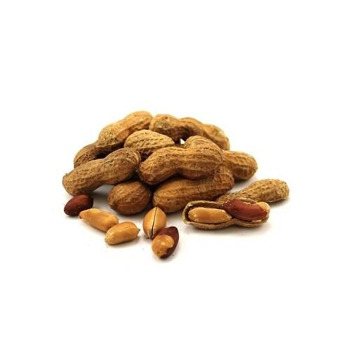 Bulk Nuts Jumbo Peanuts - Roasted and Salted - 30 lb.