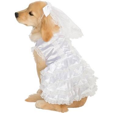Dog Blushing Bride Pet Halloween Costume