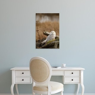 Easy Art Prints Rick A Brown's 'Snowy Owl' Premium Canvas Art